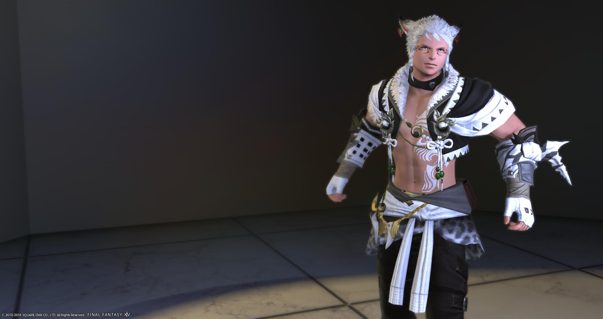 Fantasia Spotlight #7: Male Miqo'te (Monk) – Fashion Ninjutsu